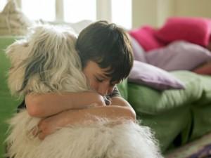 boy with dog for wordpress