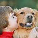 Children & Pet Loss